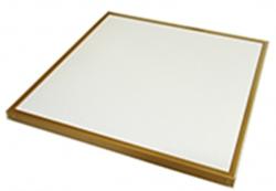 250瓦金色边框硅晶板